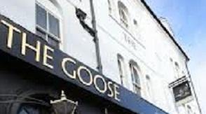 The Goose E17