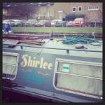 Shirlee